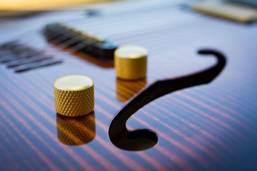 Guitares Brice-124