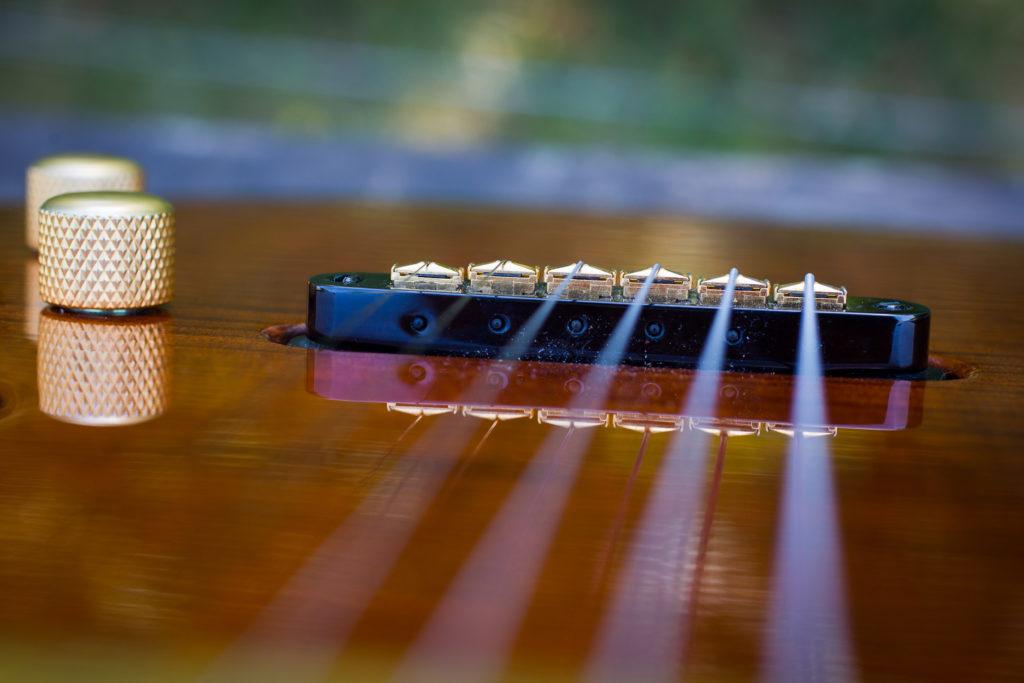 Guitares Brice-138