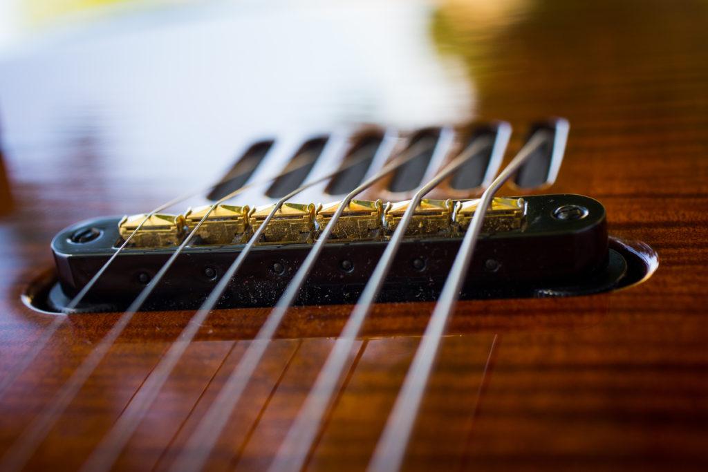Guitares Brice-161