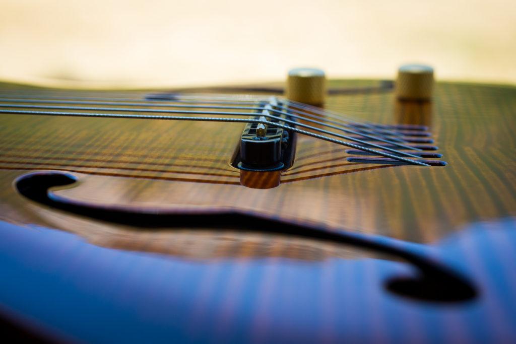 Guitares Brice-167