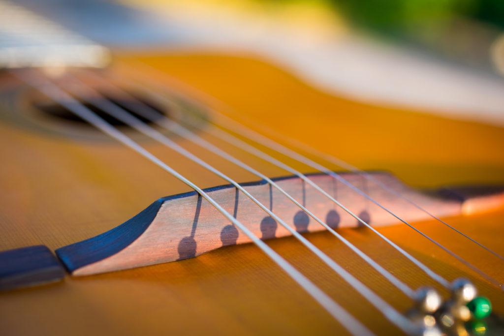 Guitares Brice-212