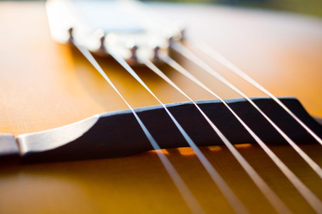 Guitares Brice-221