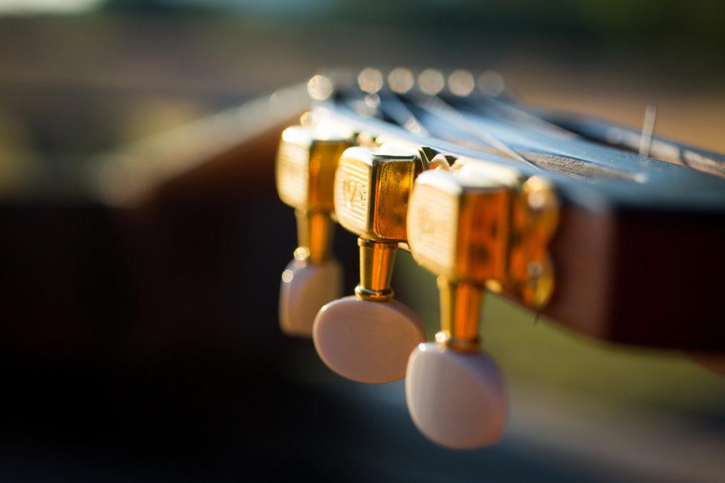 Guitares Brice-226