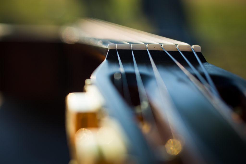 Guitares Brice-230