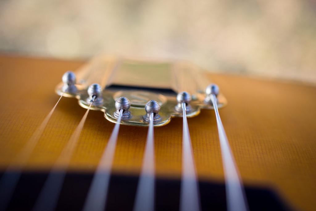 Guitares Brice-252