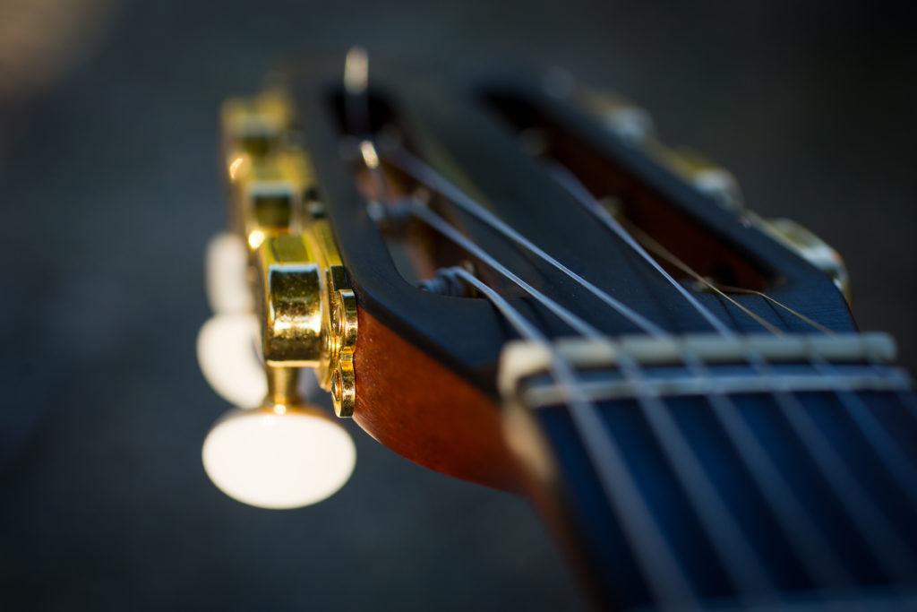 Guitares Brice-263