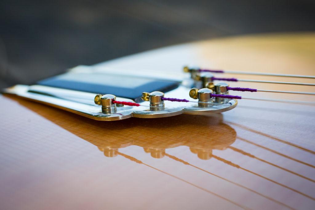 Guitares Brice-4