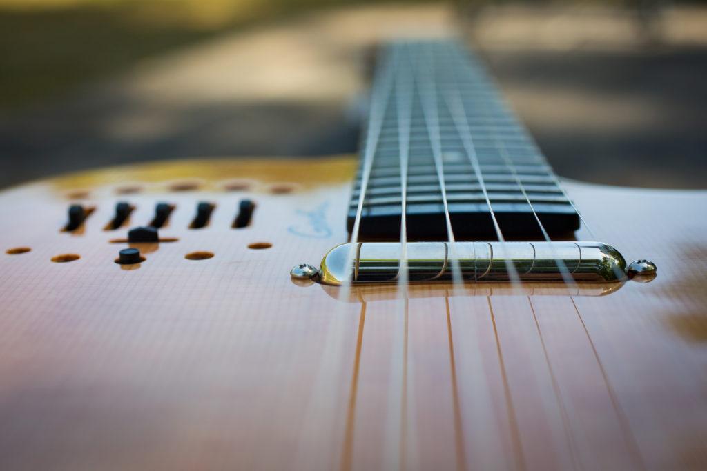 Guitares Brice-6