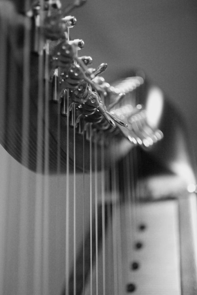 Harpe 2010 (3)