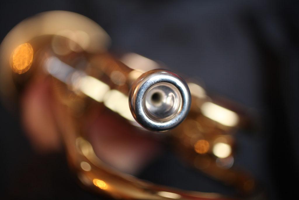 Trompette 2011 (27)